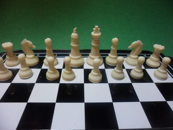 Learn How To Play Chess: The Basics
