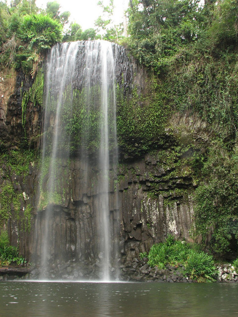 Image of Millaa Millaa falls